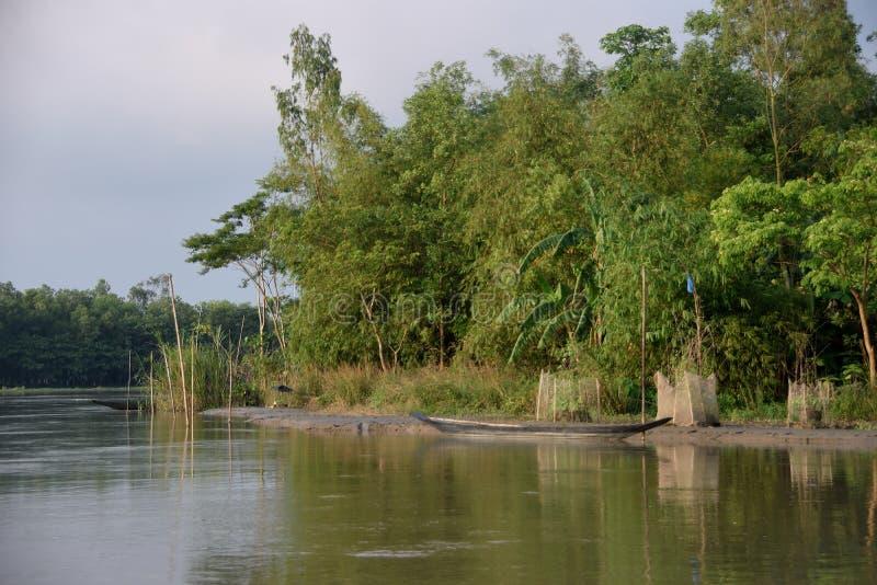 Barco de río en el agua, con otra ocultada detrás de bambúes fotografía de archivo libre de regalías