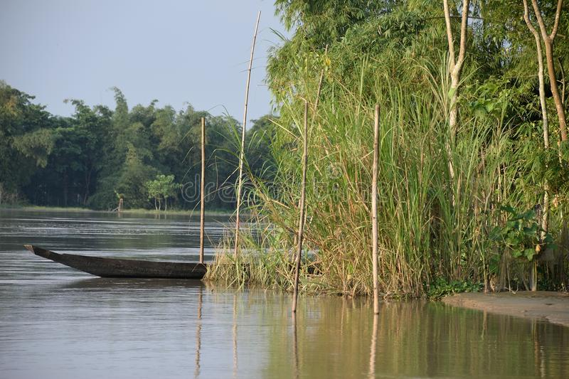 Barco de río en el agua, ocultada detrás de bambúes foto de archivo