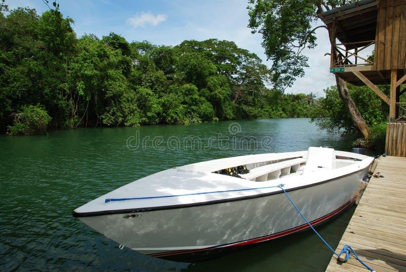 Barco de rio imagem de stock royalty free