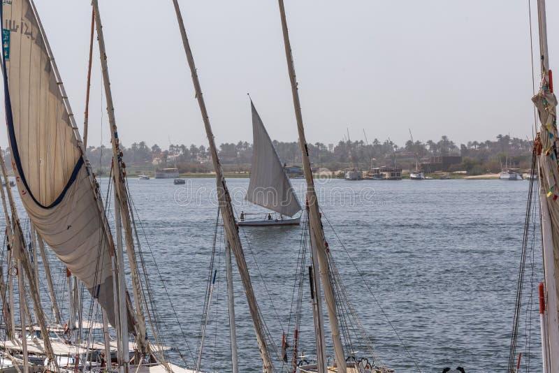 Barco de rio de Felucca no Nilo, com o Sahara atrás em Aswa foto de stock