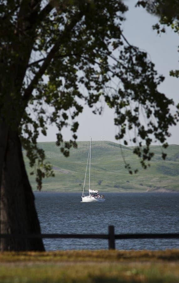 Barco de vela en el lago Francis Case fotos de archivo