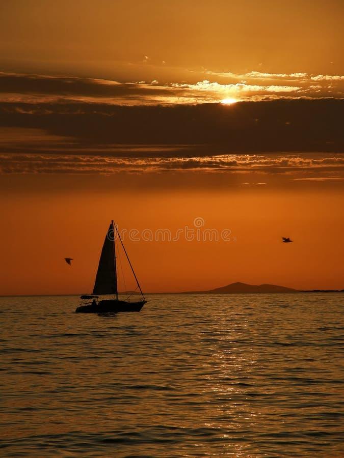 Barco de vela y gaviota en la puesta del sol imagen de archivo libre de regalías