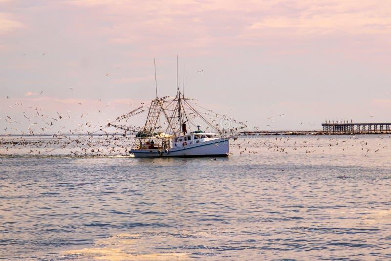 Barco del camarón en la isla magnífica, Luisiana fotografía de archivo