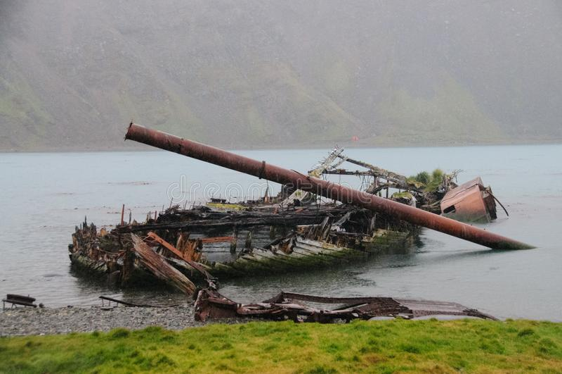 Barco destruído em Grytvyken imagem de stock
