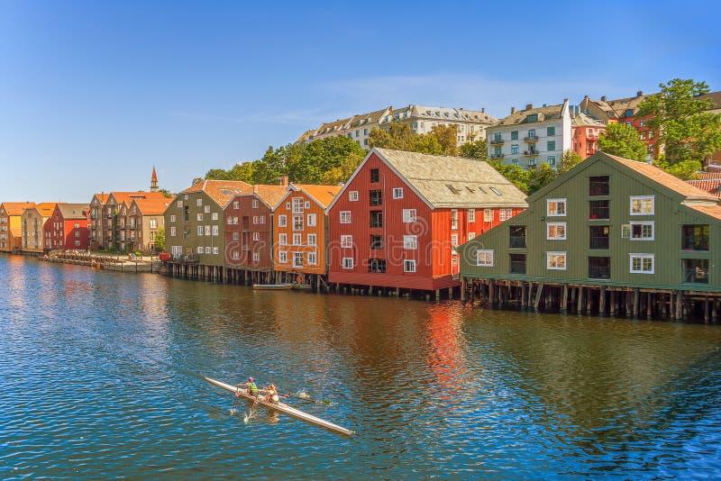 Barco dobro do scull no rio de Nidelva trondheim Condado de Trondelag noruega imagem de stock royalty free