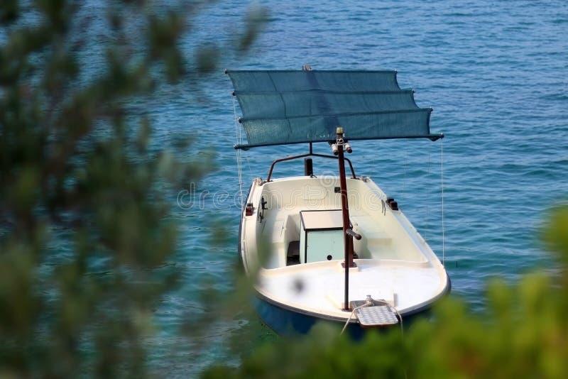 Barco e Olive Tree imagem de stock