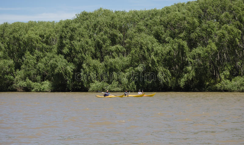 Barco en el delta de la placa del río, la Argentina fotos de archivo libres de regalías