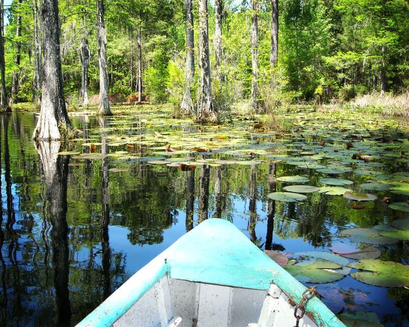 Barco en los jardines Carolina del Norte del pantano del ciprés