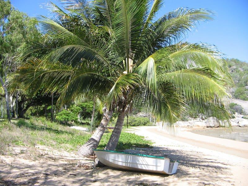 Barco na costa sob a palmeira na praia tropical fotografia de stock