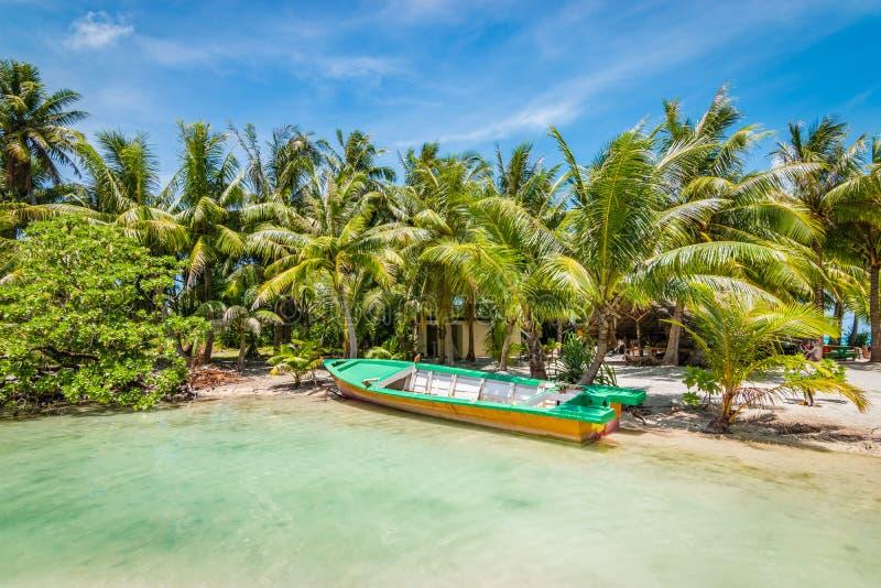 Barco na praia da palmeira em Bora Bora fotos de stock