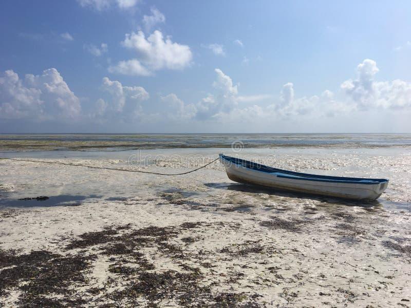 Barco na praia de Paje, Zanzibar fotos de stock royalty free