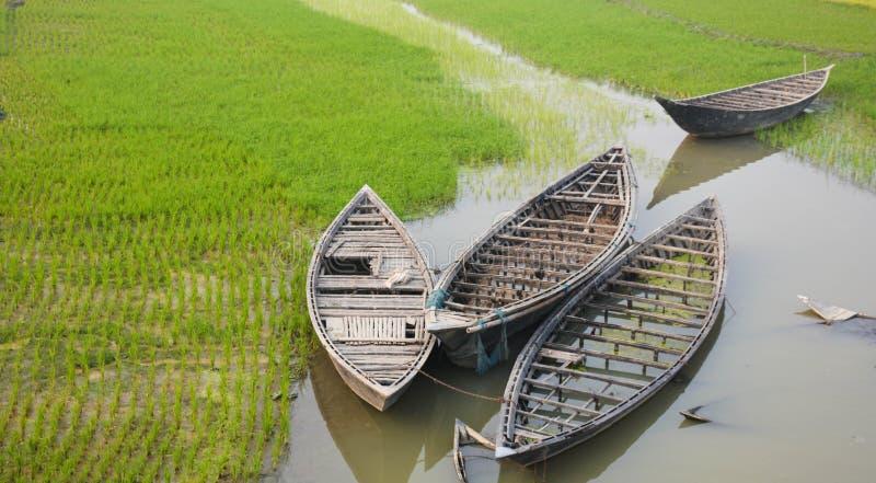 Barco no campo de almofada imagem de stock
