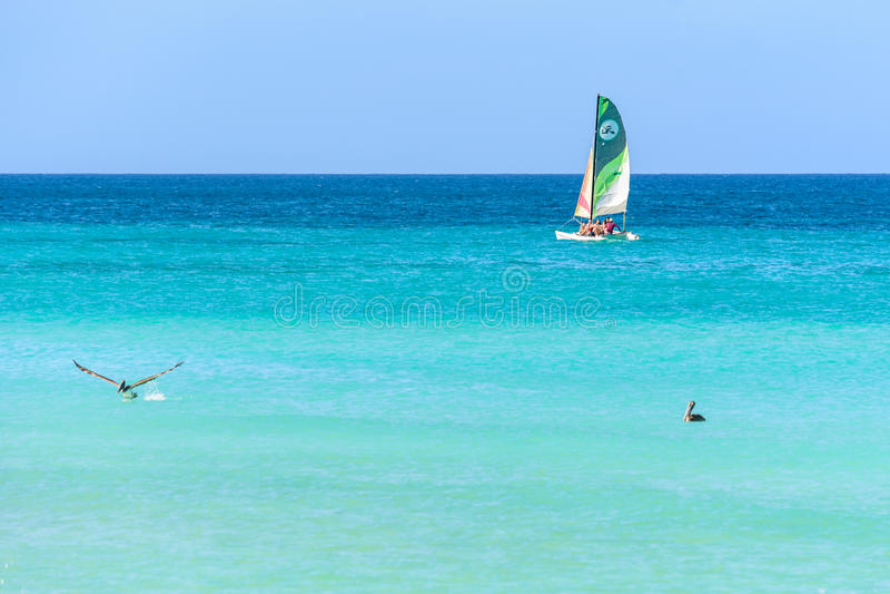 Barco, pelicano e mar azul em Varadero foto de stock