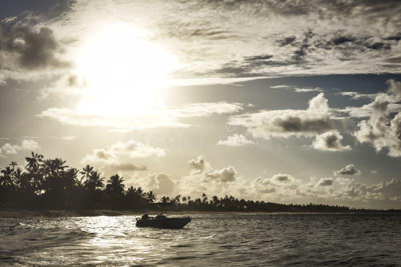 Barco pelo mar no por do sol com as palmeiras no fundo fotos de stock