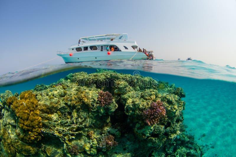 Barco pequeno do safari com os snorkelists prontos para saltar na água foto de stock