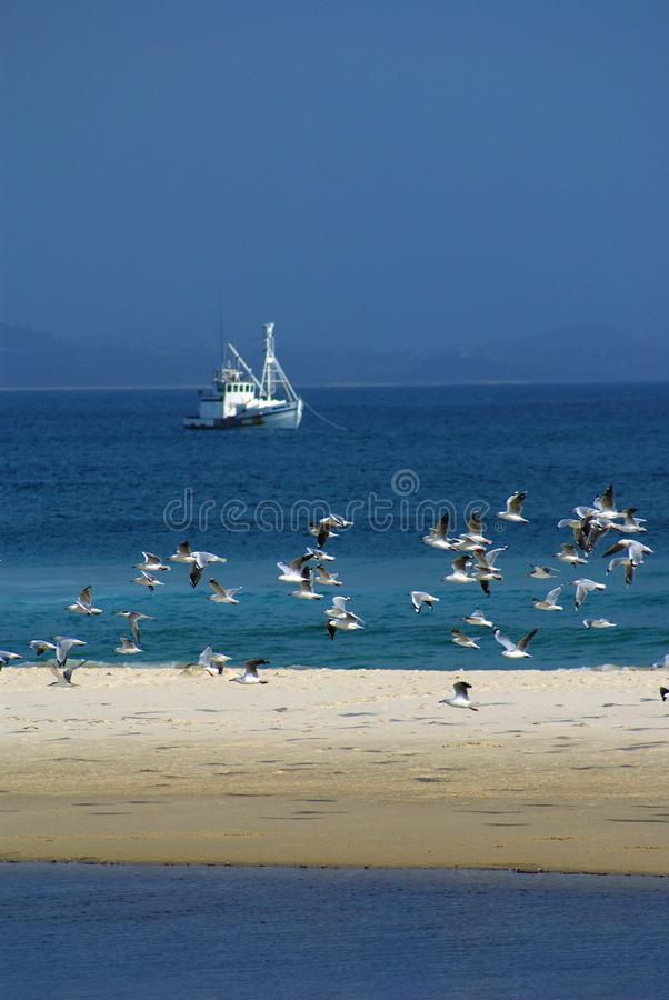 Barco rastreador del barco de pesca fotos de archivo libres de regalías