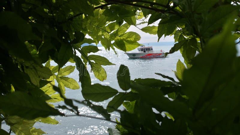 Barco a través de las hojas imágenes de archivo libres de regalías