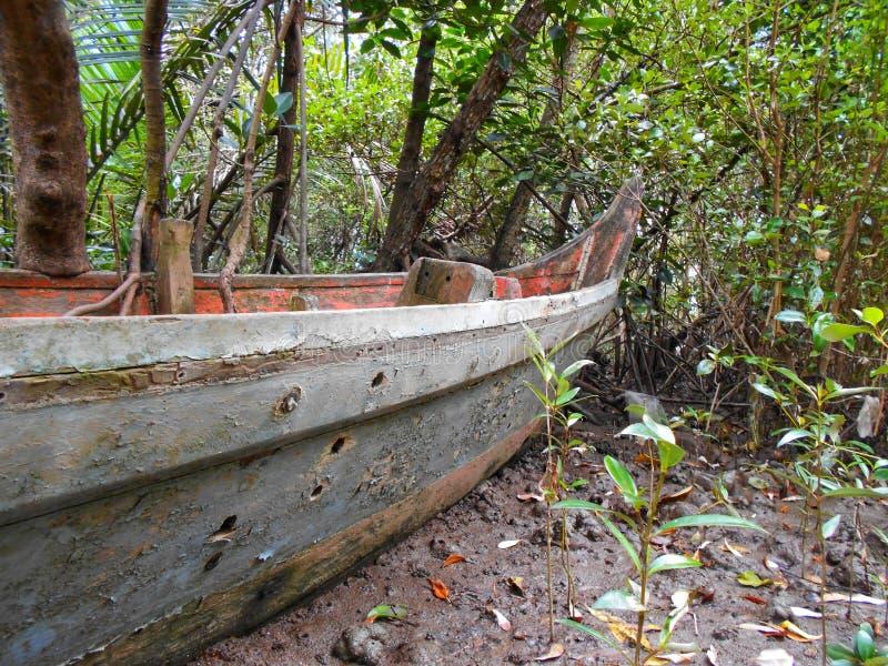 Barco velho, estacionado no solo na floresta dos manguezais fotografia de stock