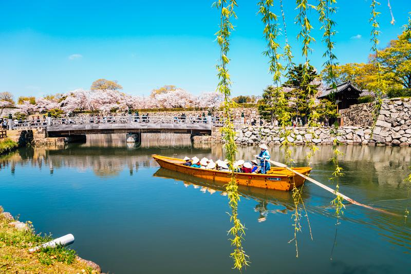 Barco velho no canal com as flores de cerejeira da mola no castelo de Himeji em Hyogo, Japão imagem de stock