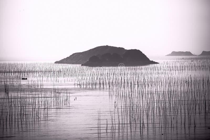 Barco y playa de pesca de la silueta durante salida del sol foto de archivo libre de regalías