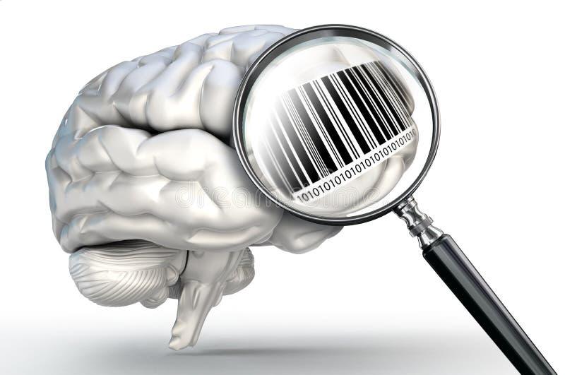 Barcode på förstoringsglaset och mänsklig hjärna royaltyfri illustrationer