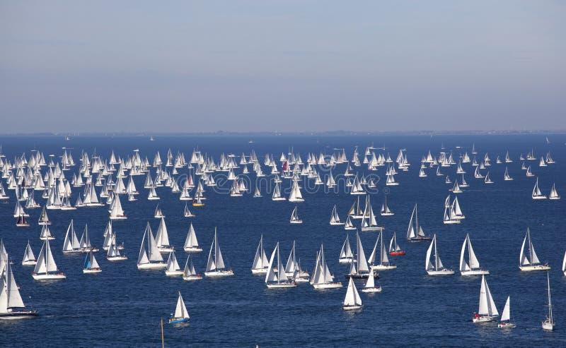 Download Barcolana, O Regatta De Trieste Foto de Stock - Imagem de sail, raça: 16856144