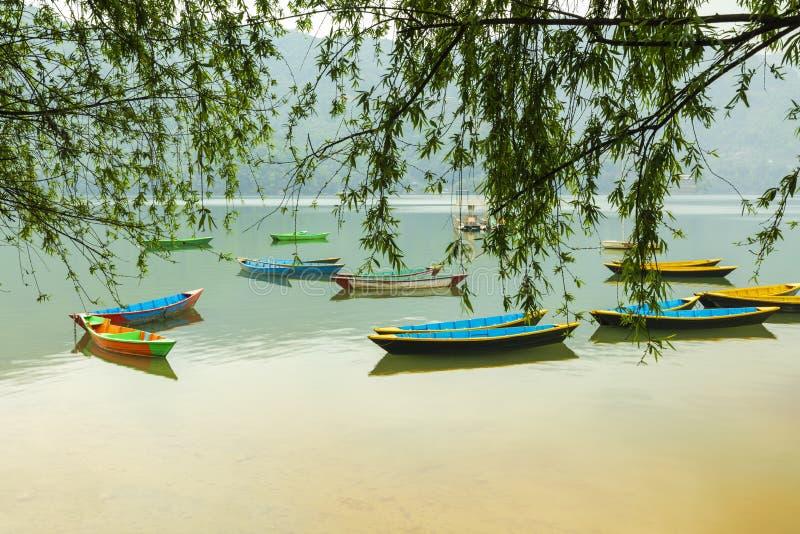 Barcos coloridos no lago Pokhara Nepal Phewa imagens de stock