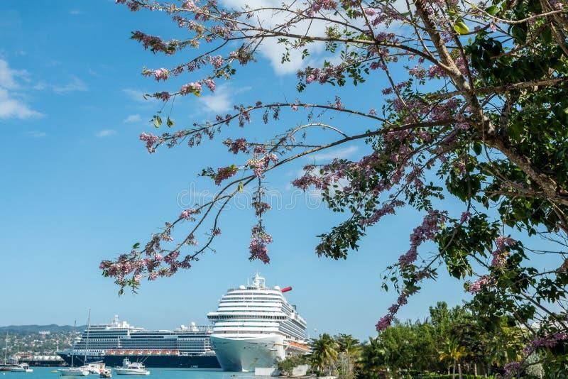 Barcos de cruceros de Carnival Dream y de Holland America Nieuw Statendam atracados en Jamaica fotos de archivo