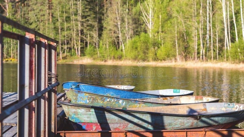 Barcos de enfileiramento velhos amarrados na costa contra a floresta verde imagens de stock royalty free