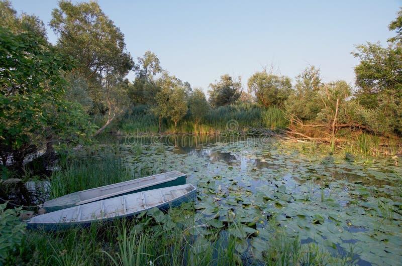 Barcos de Hutovo Blato do parque natural foto de stock royalty free