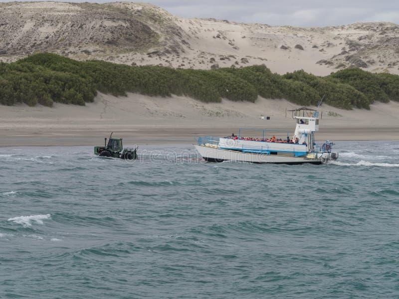 Barcos de observación de la ballena fotos de archivo libres de regalías