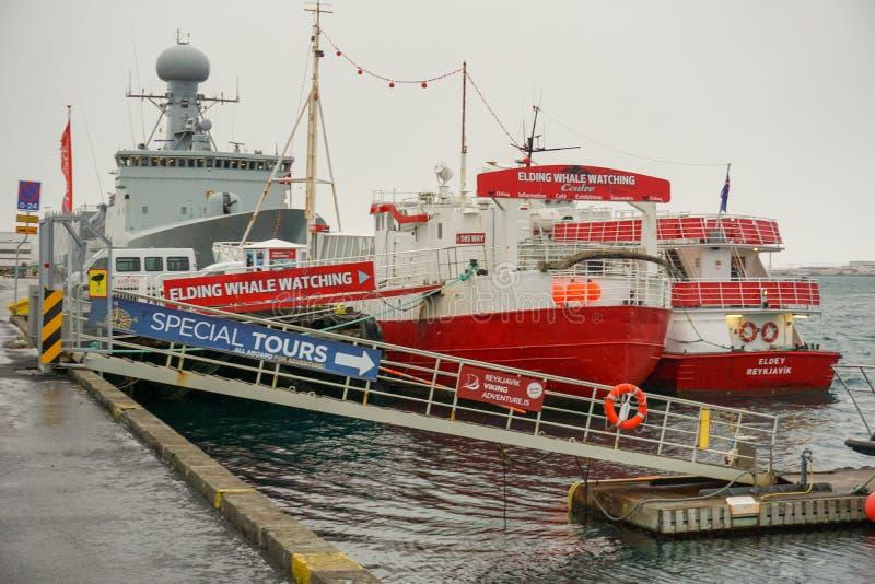 Barcos de observación de la ballena en el puerto de los turistas que esperan de Reykjavik para fotografía de archivo libre de regalías