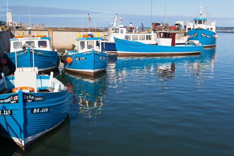 Barcos de pesca azuis típicos em Seahouses foto de stock royalty free