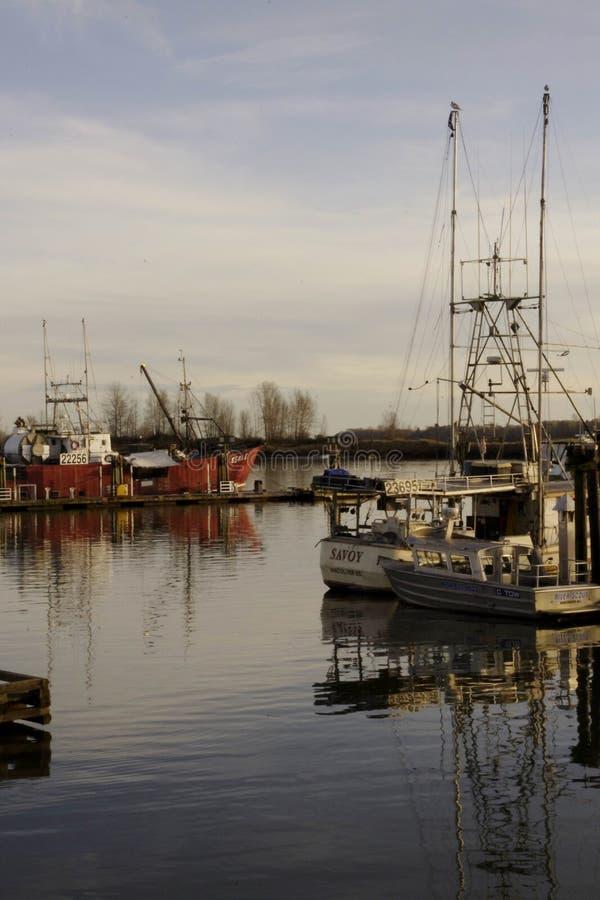 Barcos de pesca em Steveston, Vancôver, Canadá imagem de stock