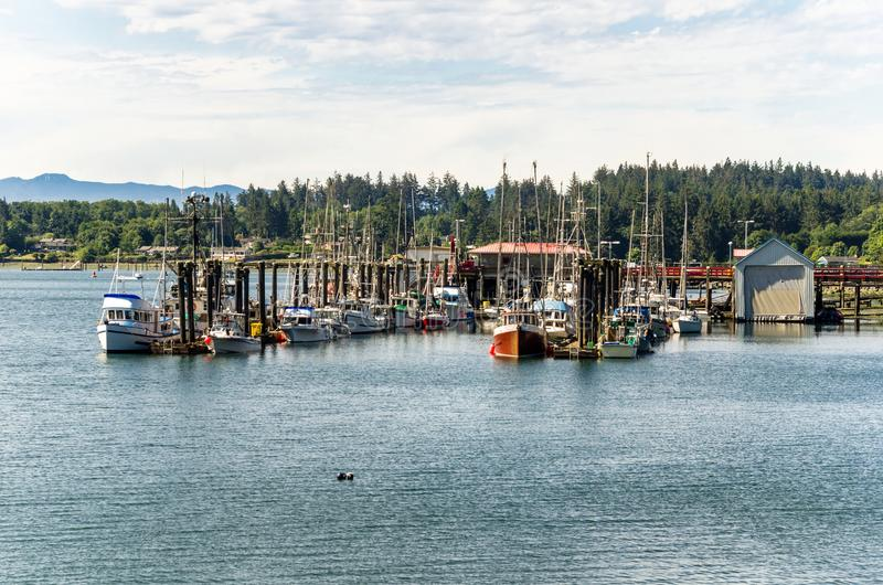 Barcos de pesca en puerto en una mañana del verano fotografía de archivo