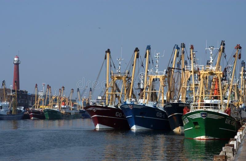 Barcos de pesca no porto fotografia de stock royalty free