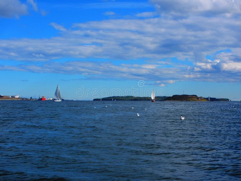 Barcos de vela cerca de Georges Island Halifax Harbor fotografía de archivo libre de regalías