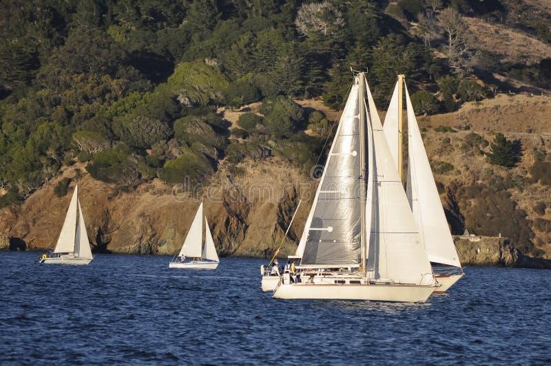 Barcos de vela de prata em San Francisco Bay fotografia de stock royalty free