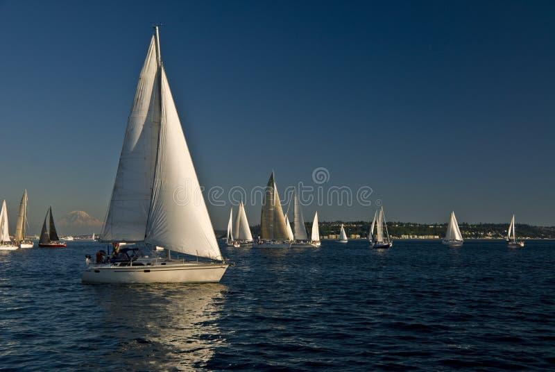 Barcos de vela en el sonido de Puget fotos de archivo libres de regalías