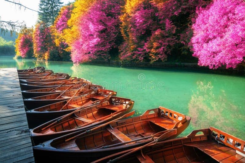 Barcos de vela que parquean en los lagos Croacia Plitvice fotografía de archivo libre de regalías