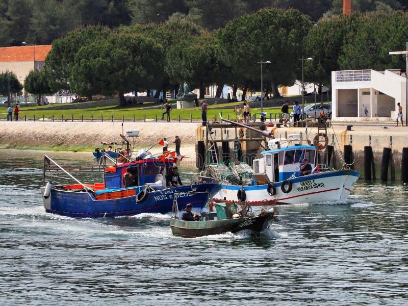 Barcos dos peixes correntes para introduzir no mercado fotografia de stock