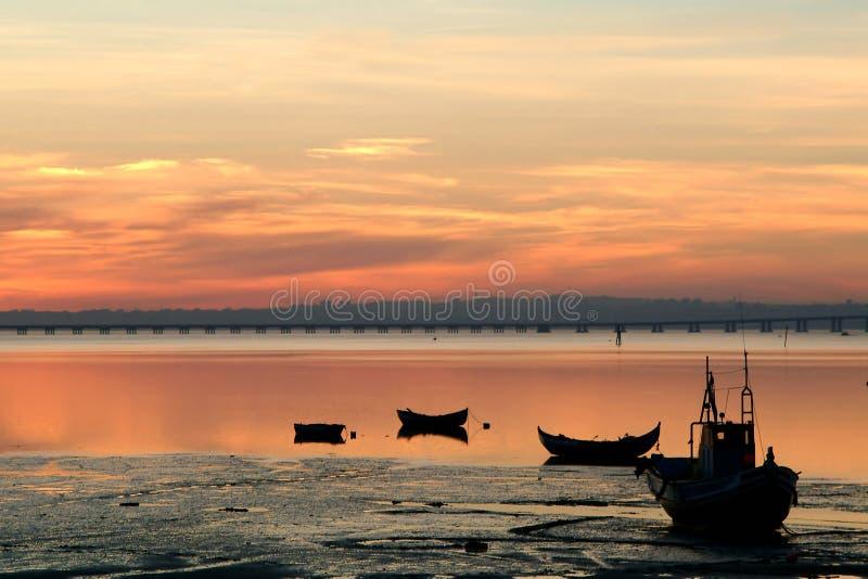 Barcos dos peixes no por do sol imagem de stock