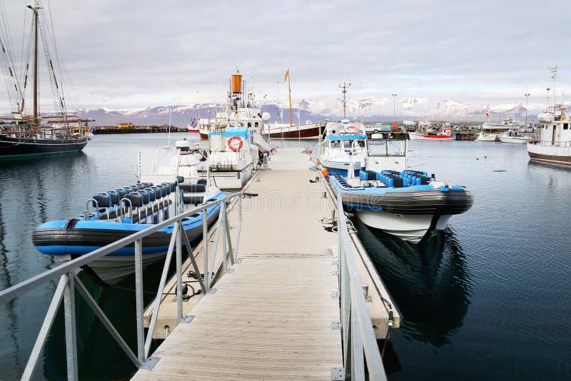 Barcos inflables del viaje grande en puerto deportivo Viaje de observación de la ballena Concepto de la exploración del viaje y d imagen de archivo