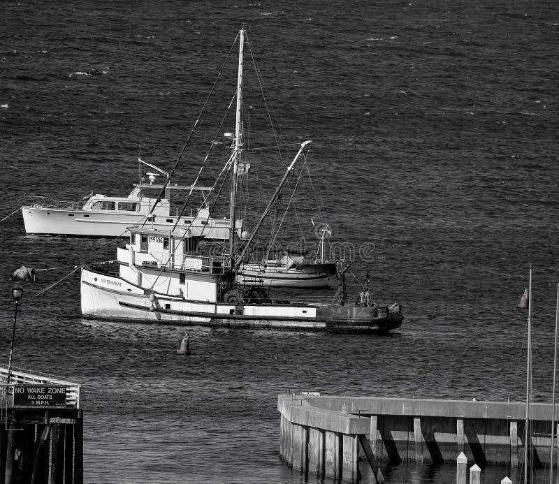 Barcos no porto de Monterey em Califórnia central foto de stock