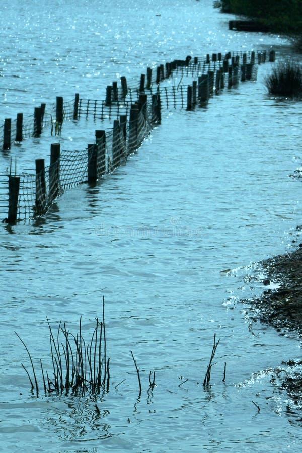 Barden Lake Flooding royaltyfria bilder