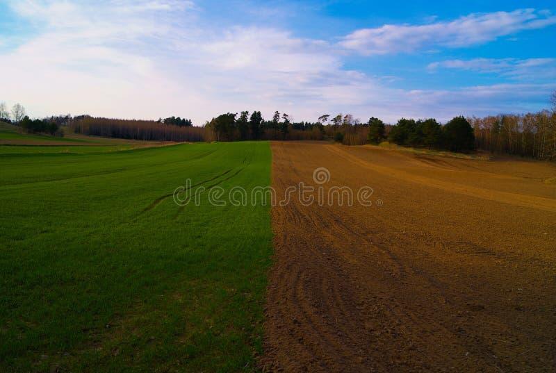 Bardzo ładny widok natura i niebo podczas słonecznego dnia fotografia royalty free