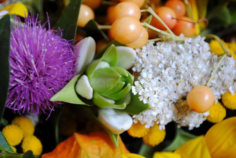 Bardzo dosyć kwiat zdjęcia stock