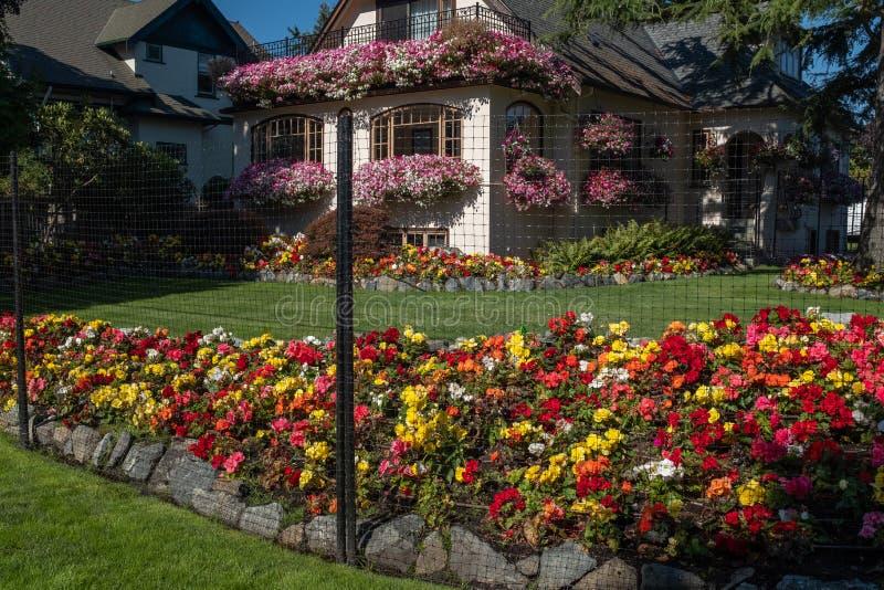Bardzo piękny i colourful ogród dom na Vancouver wyspie, BC, Kanada zdjęcie stock