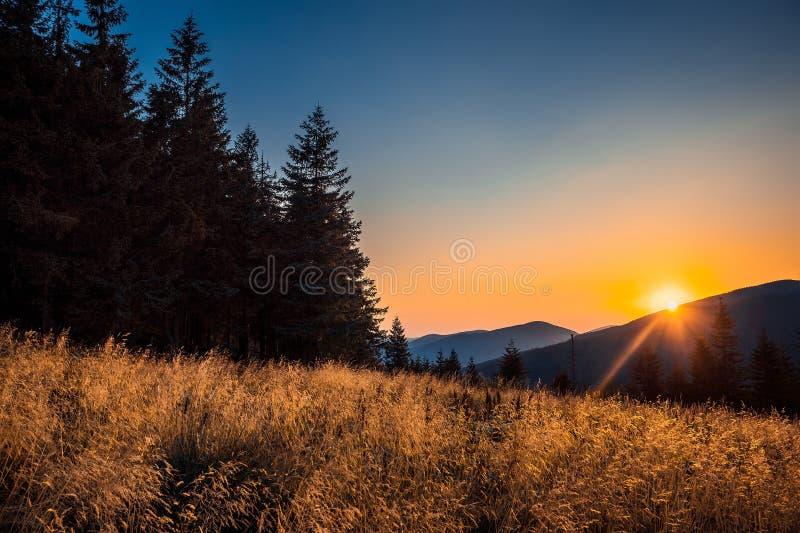 Bardzo piękny zmierzch w Karpackich górach fotografia royalty free