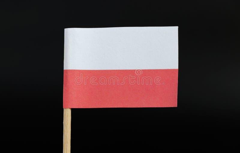 Bardzo prosta flaga Polska na wykałaczce na czarnym tle i urzędnik Składa się horyzontalny bicolour biel i czerwień obraz stock